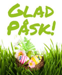Easter egg in nest in the green grass